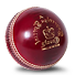 Cricket Team management software :: TeamSnap